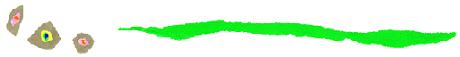 logo_boader
